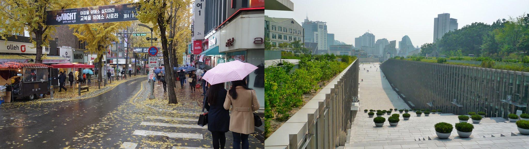 Wow! Ini Loh 5 Universitas Khusus Wanita Paling TOP di Korea!