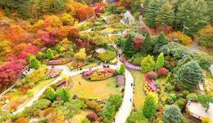 tempat wisata di Korea The Garden of Morning Calm