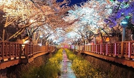 taman romantis korea