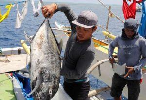 fishing korea