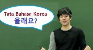 Tata bahasa Korea mau