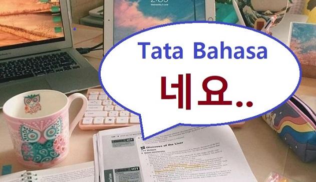 Tata bahasa Korea neyo
