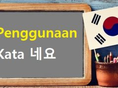 tata bahasa korea 네요