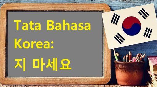 tata bahasa korea ji maseyo