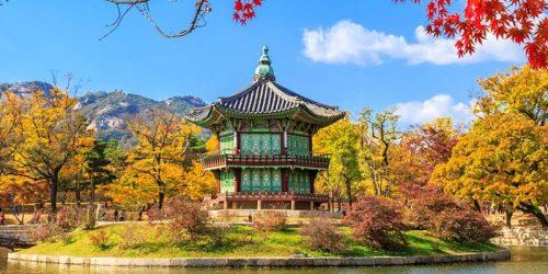 KGSP korea selatan