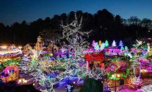 Herb Island Light& Illumination Festival