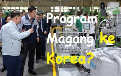 program magang di Korea