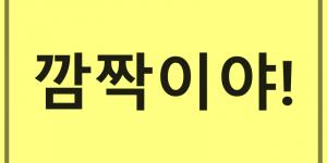 bahasa gaul Korea kamcakiya
